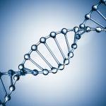 Endringene i Bioteknologiloven